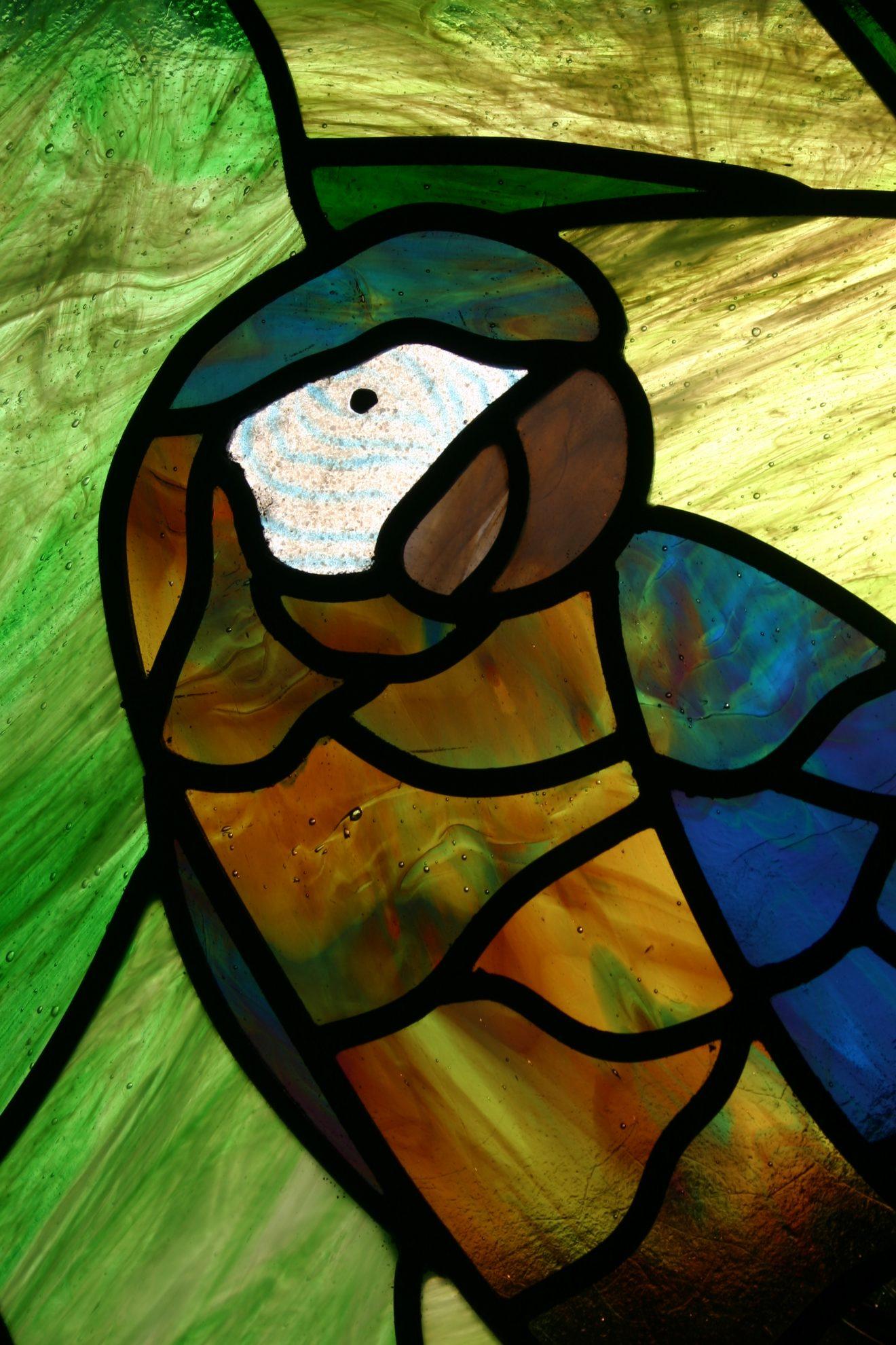 10.parrot.detail.2