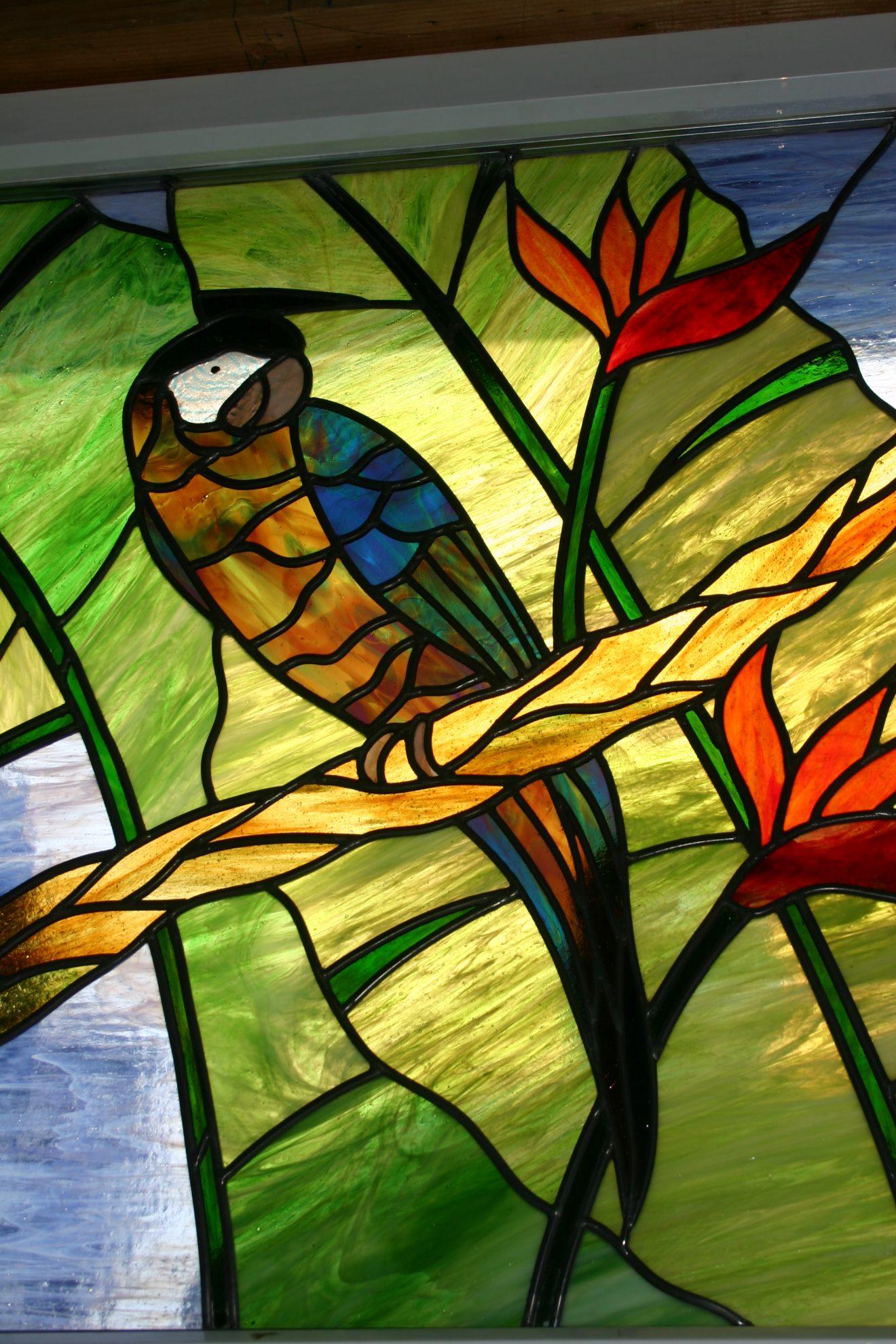 11.parrot.2