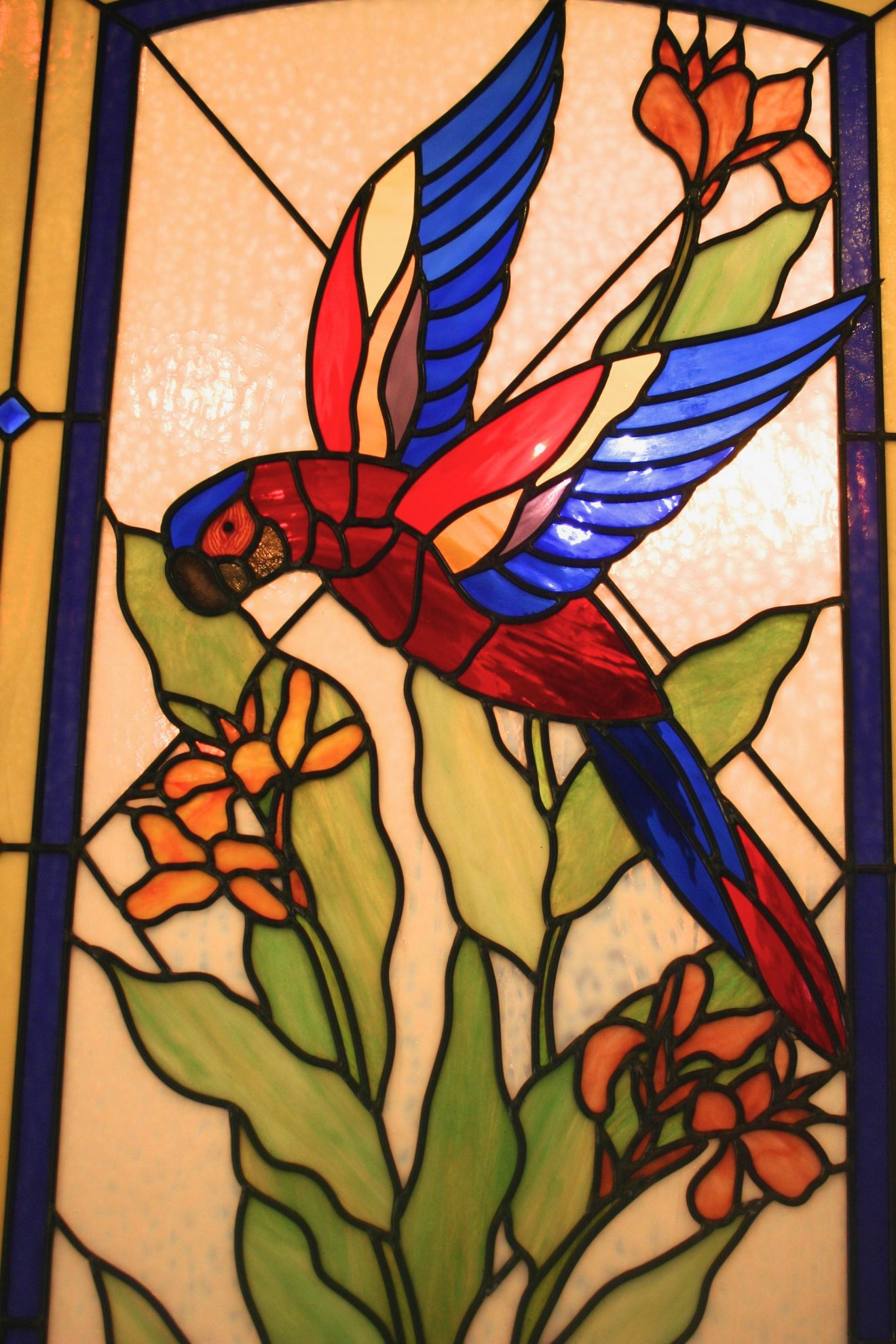 12.parrot.canna.detail