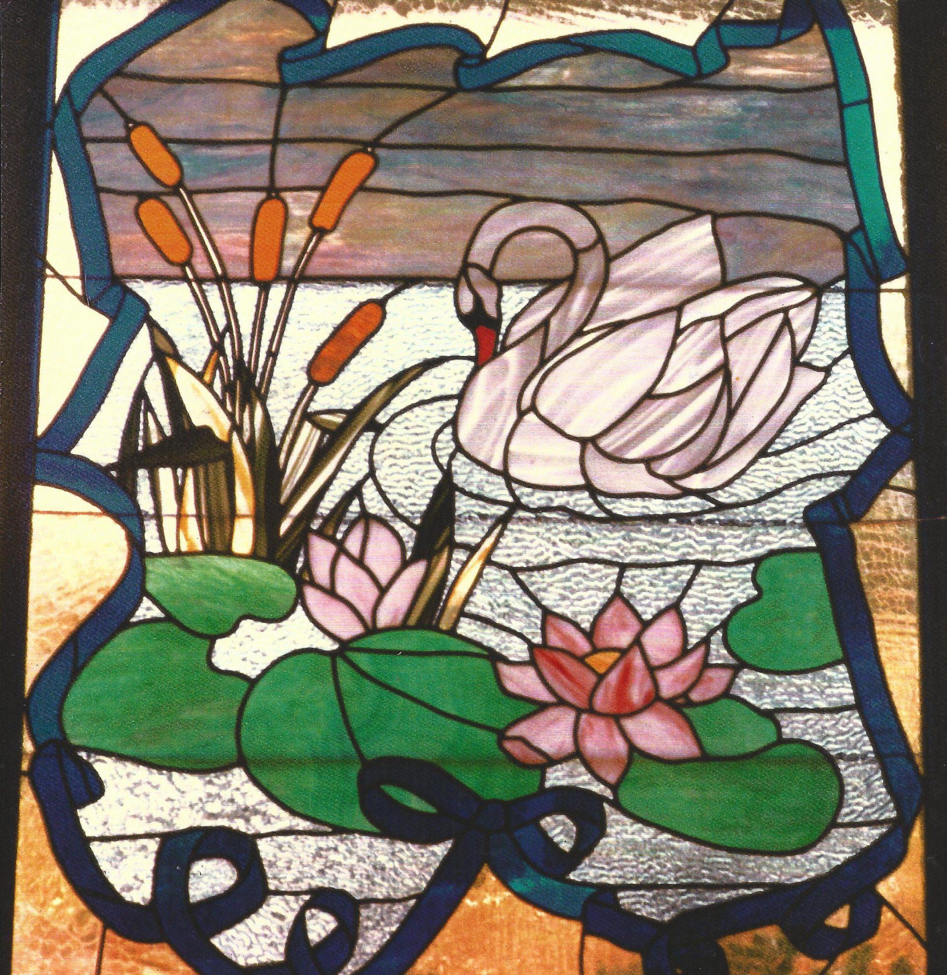 23.swan.waterlily