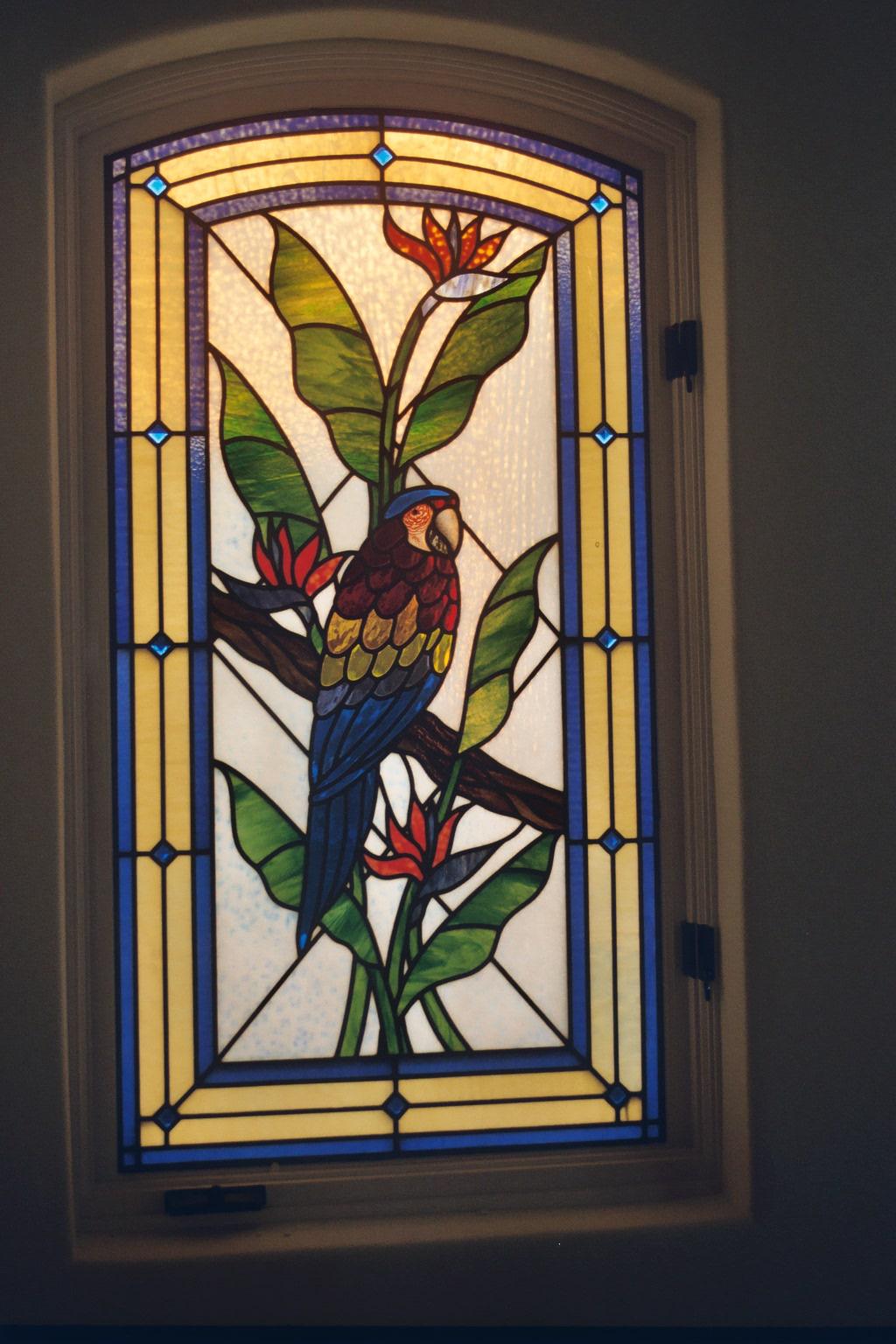 26.bird.of.paradise.parrot
