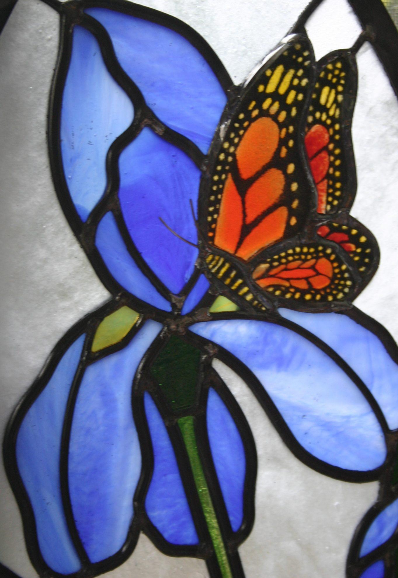 7.iris.monarch.oval.detail