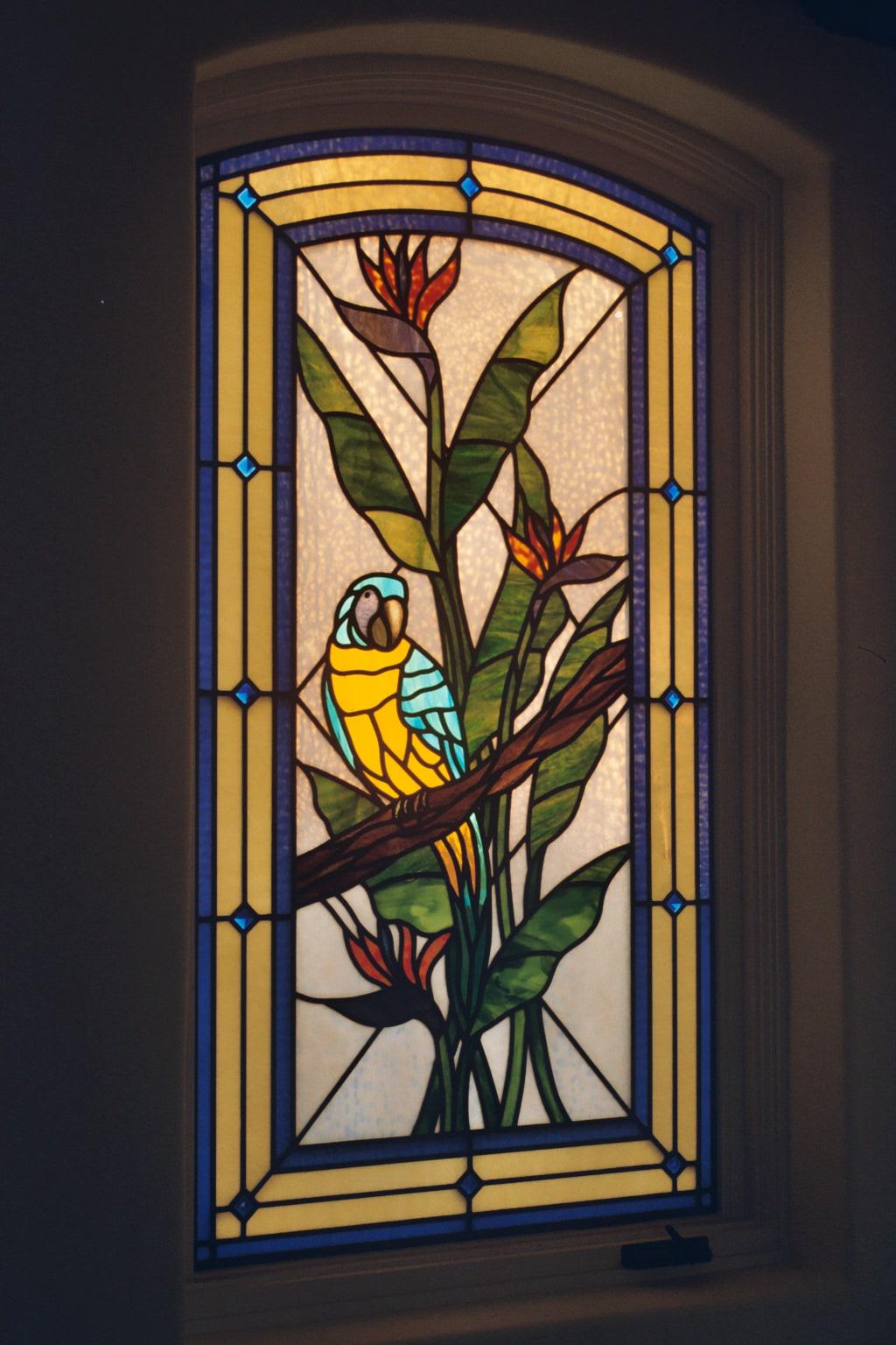 9.blue.yellow.parrot 2