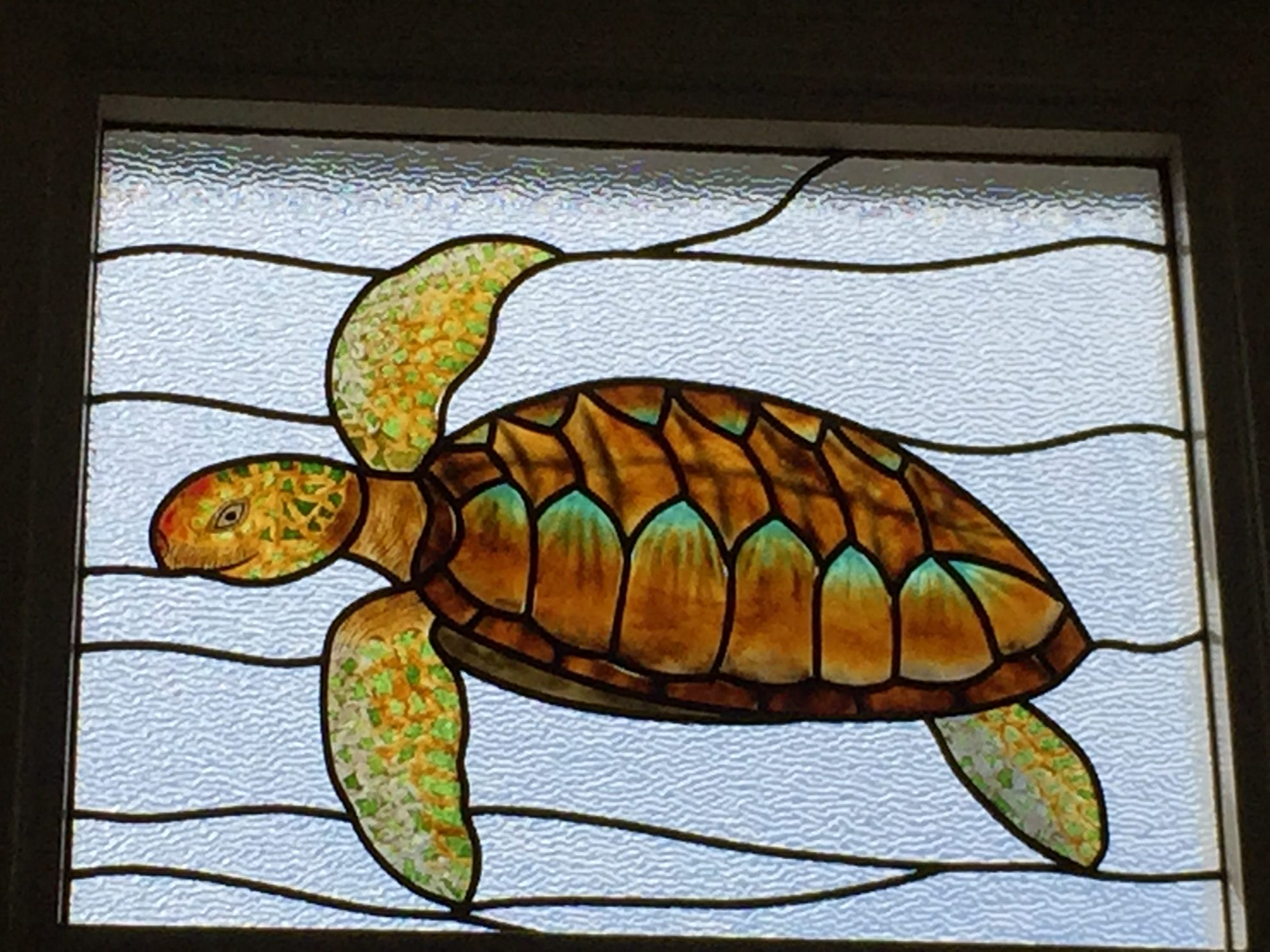14.sea.turtle