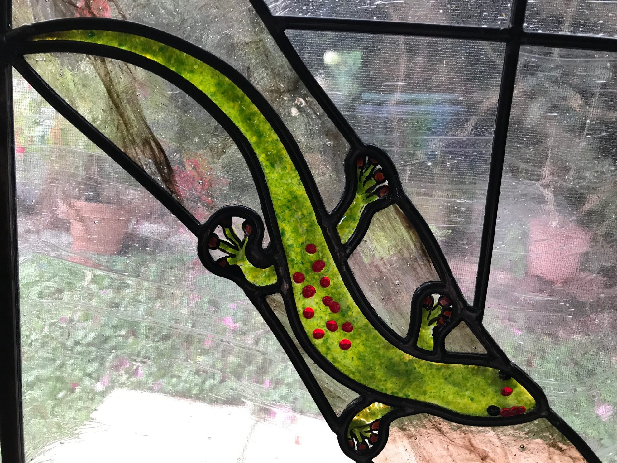 17.gecko